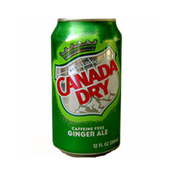 CANADA DRY 24x33cl (cans)